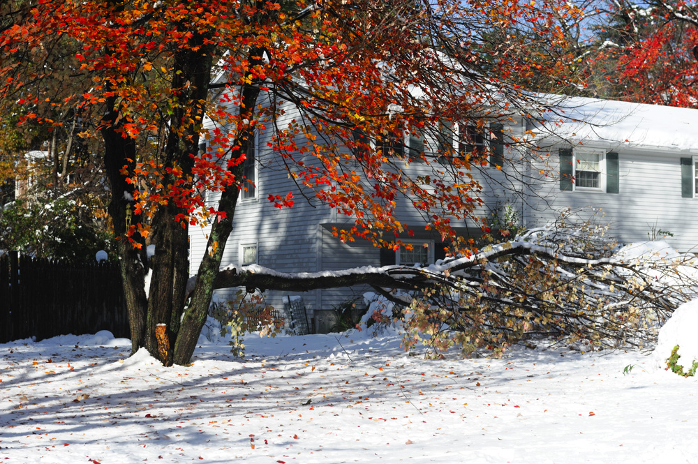 Winter Storm Restoration The Homeowner S Guide To Damage